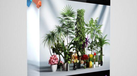 CGAxis模型第1卷包含20种与3ds max 2008或更高版本兼容的高度详细的植物模型。缩略图