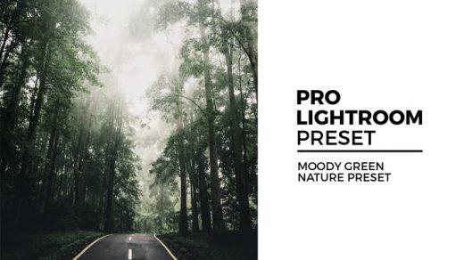 喜怒无常的绿色自然Lightroom预设Moody Green Nature Preset缩略图