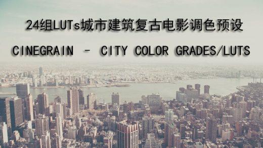 DaVinci Resolve.AE.PR.PS 24组LUTs城市建筑复古电影调色预设缩略图