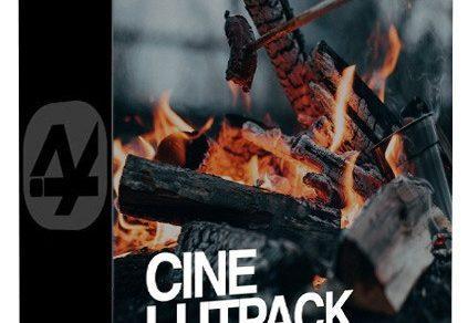 LUT预设,索尼A7III专业视频LUT预设CMG – Cine LUTs for Sony A7III (Win/MacOS) ,效果图 LUT预设下载