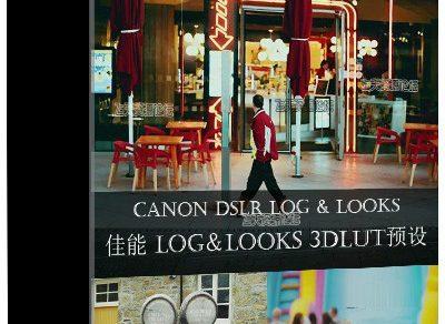 佳能 Canon DSLR LOG3 & LOOKS pf3 Profiles +专业视频调色LUTs预设下载缩略图