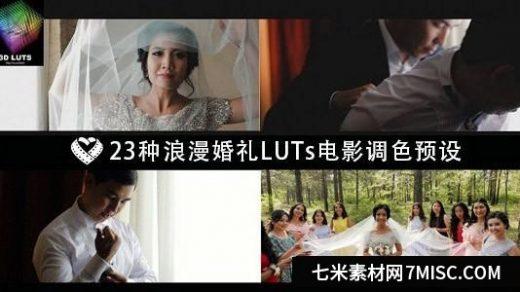 23种浪漫唯美婚礼 LUTs 电影调色预设 LAPARDIN WEDLUTS缩略图