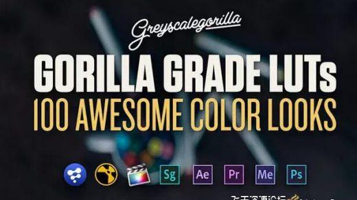 100种3D LUTs专业电影调色预设文件 GSG Grade LUTs (附教程)缩略图