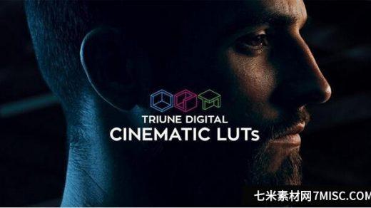 300组LUTs电影大片风格调色预设 Triune Digital: Cinematic LUTs缩略图