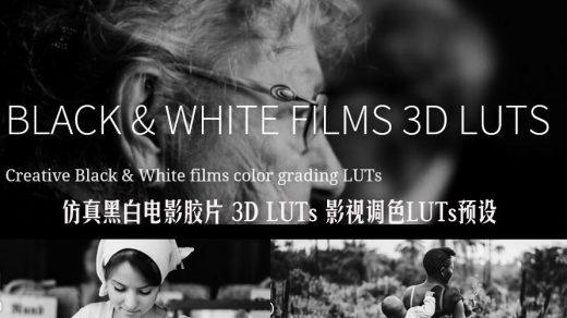 16种仿真黑白电影胶片 3D LUTs 影视调色LUTs预设缩略图