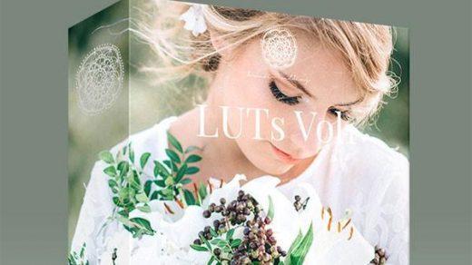 高端婚礼视频调色LUTs预设-Kreativ Wedding LUTs Vol1 (Win/Mac)缩略图