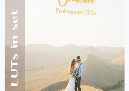 LUT预设,时尚大气电影婚礼人物运动大疆航拍季节环境视频LUTs预设 ,效果图 LUT预设下载